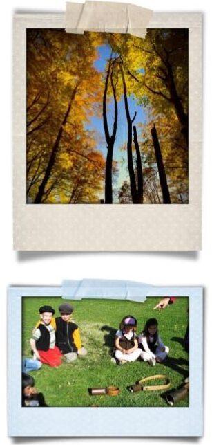 La castanyada - Fitxa activitats - Sortida 1 dia - Ed. Infantil i Cicle inicial