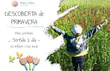 WEB DESCOBERTA de PRIMAVERA Fitxa activitats _ Sortida 1 dia - Ed. Infantil i Cicle inicial (1)