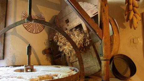 casa de colonies moli fariner
